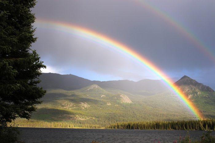虹を見ると幸運が舞い降りる